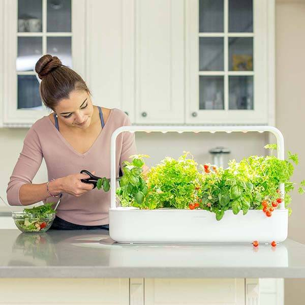 Indoor Smart Gardens and Gardening Kits from Click and Grow Souith Africa